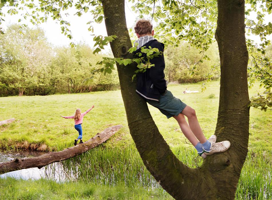 Kinder spielen zwischen Bäumen und Bach